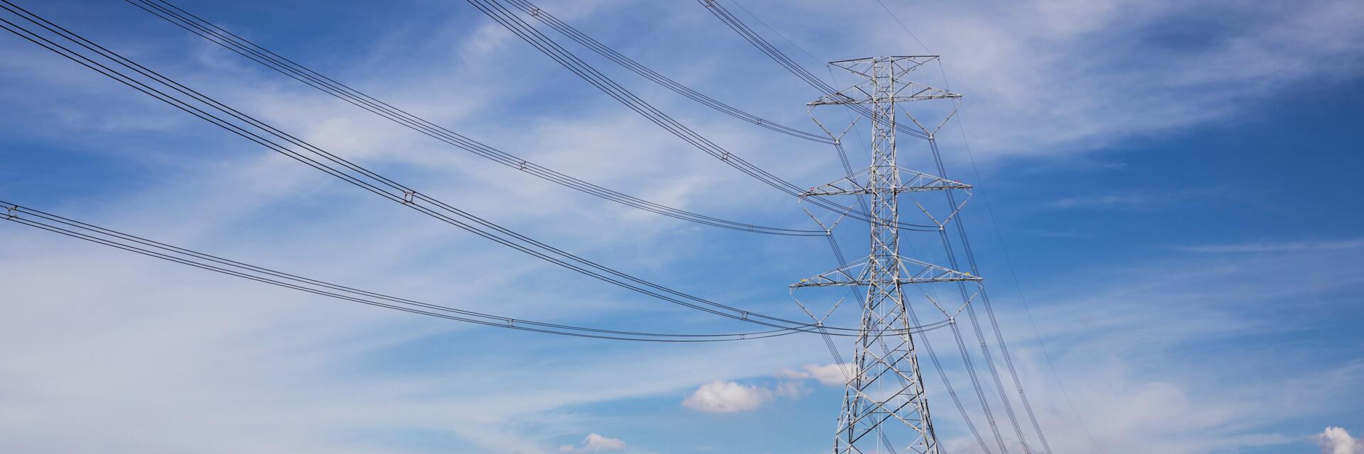 Инспекция ЛЭП Обеспечьте безопасность при осмотре опасных объектов инфраструктуры, ускорив стандартные операции обслуживания.